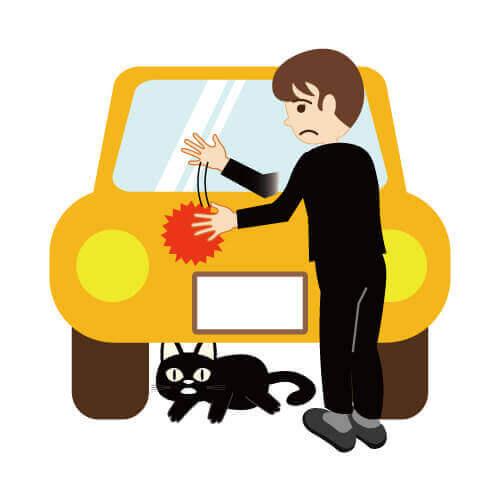 猫バンバンでネコをエンジンルームから出す