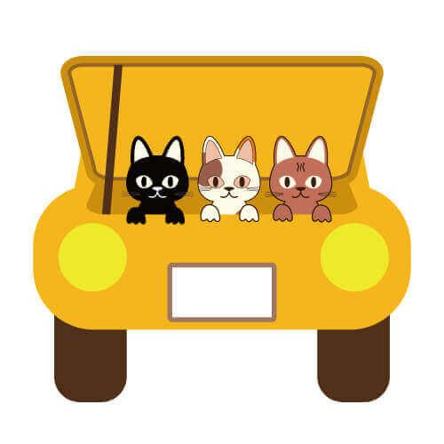 エンジンルームにネコ