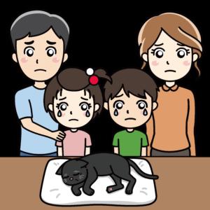 ペットの猫とお別れする家族