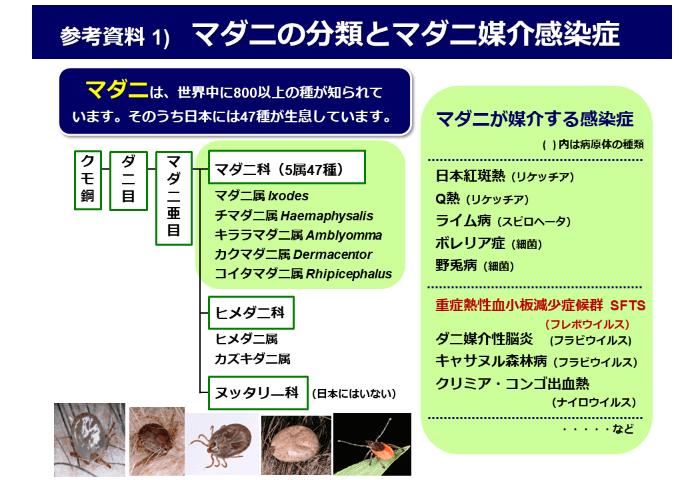 国立感染症研究所「マダニ分類とマダニ媒介感染症」