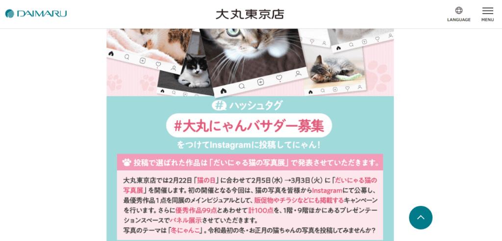 「だいにゃる猫の写真展」を開催